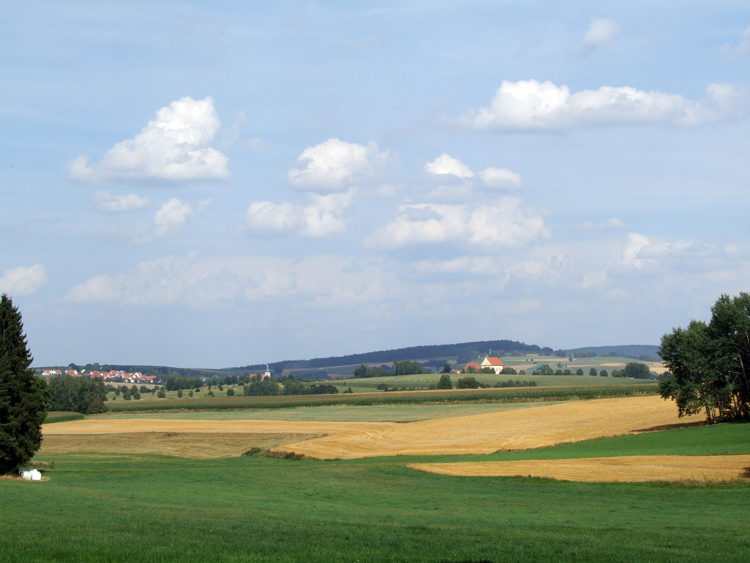 Ottengrün und Neualbenreuth