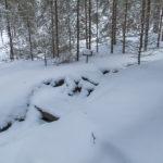 Nach Frost und Schnee
