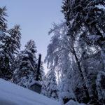 Winterlicher Ausblick