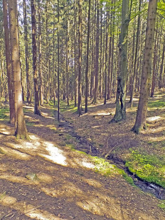 Pointmühlbach