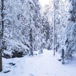 Winterliche Wetterlage