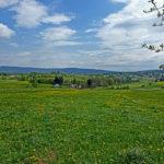 Frühling in der Frais(ch)